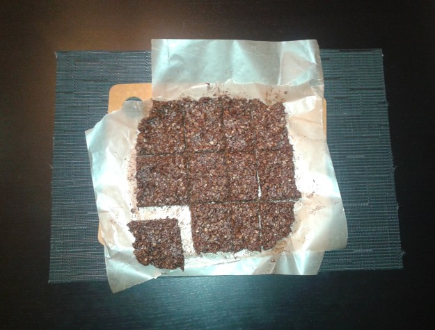 Chocolate Peanut Butter and Oat Squares 6