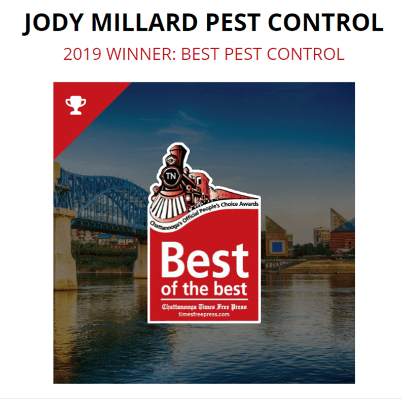 best pest control chattanooga tn