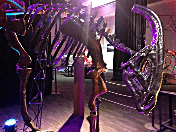 Dinosaurs in Motion at TELUS Spark