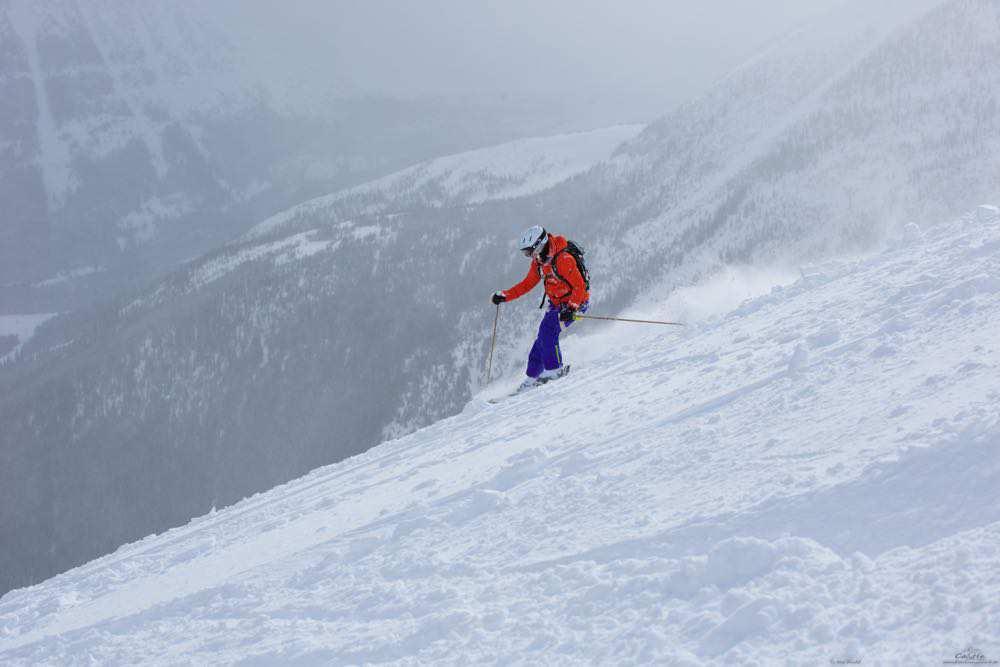 cat ski