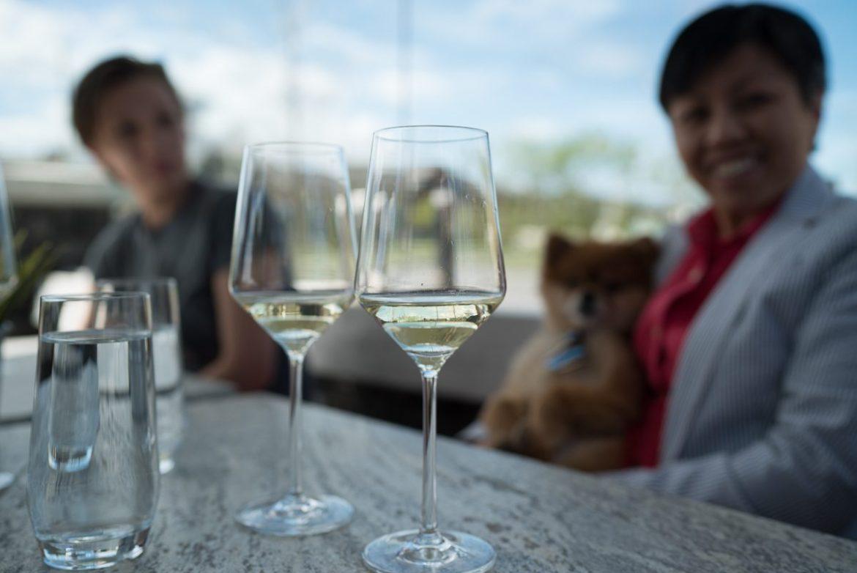 vin room calgary