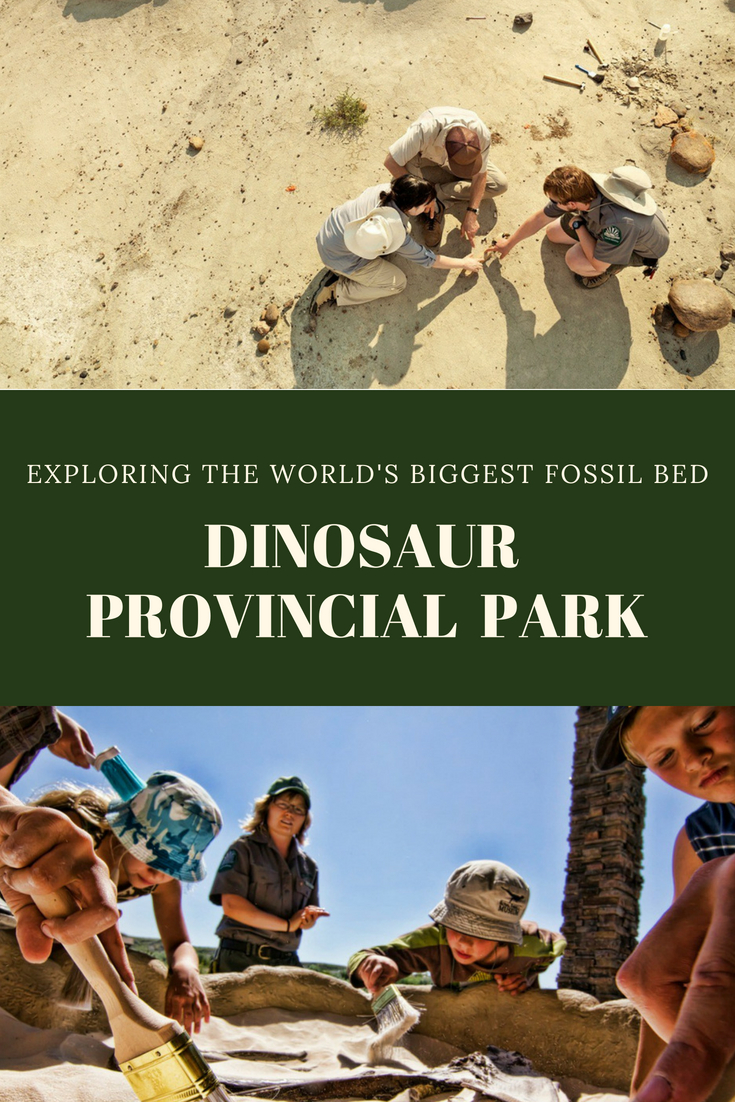Dinosaur provincial park canada