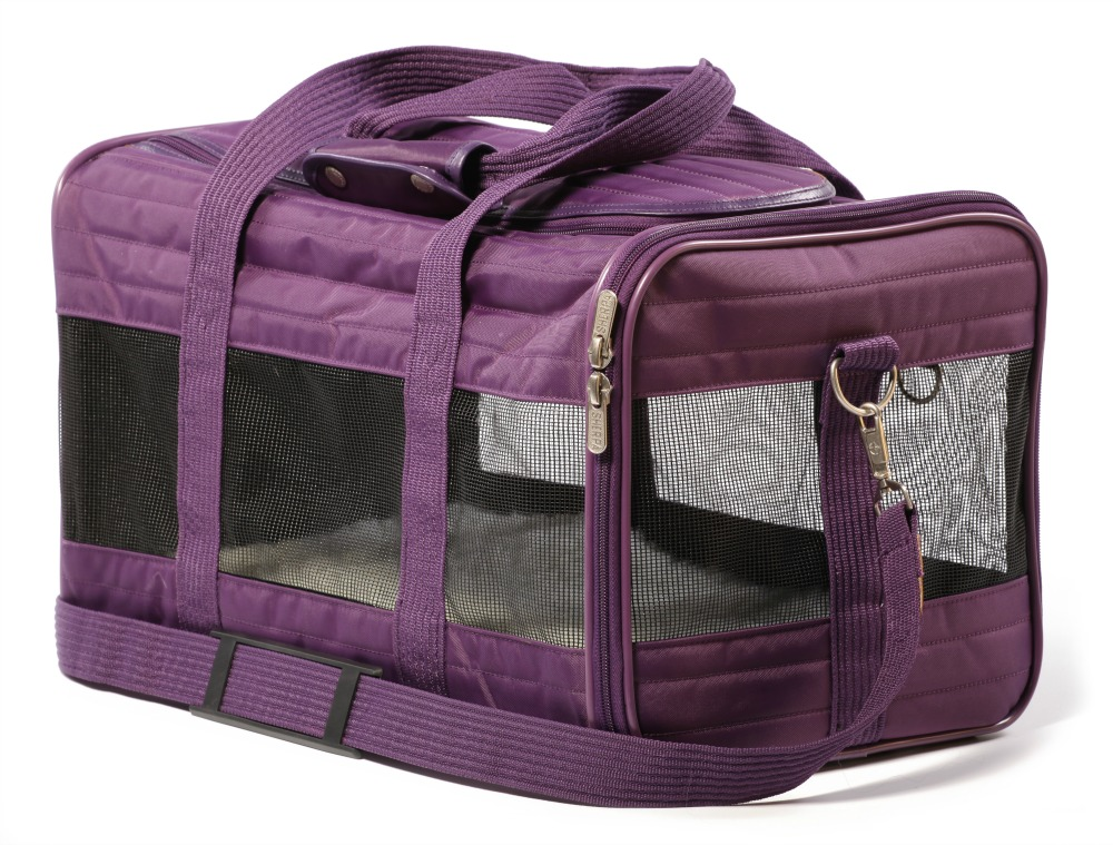 The very best products for pet travel