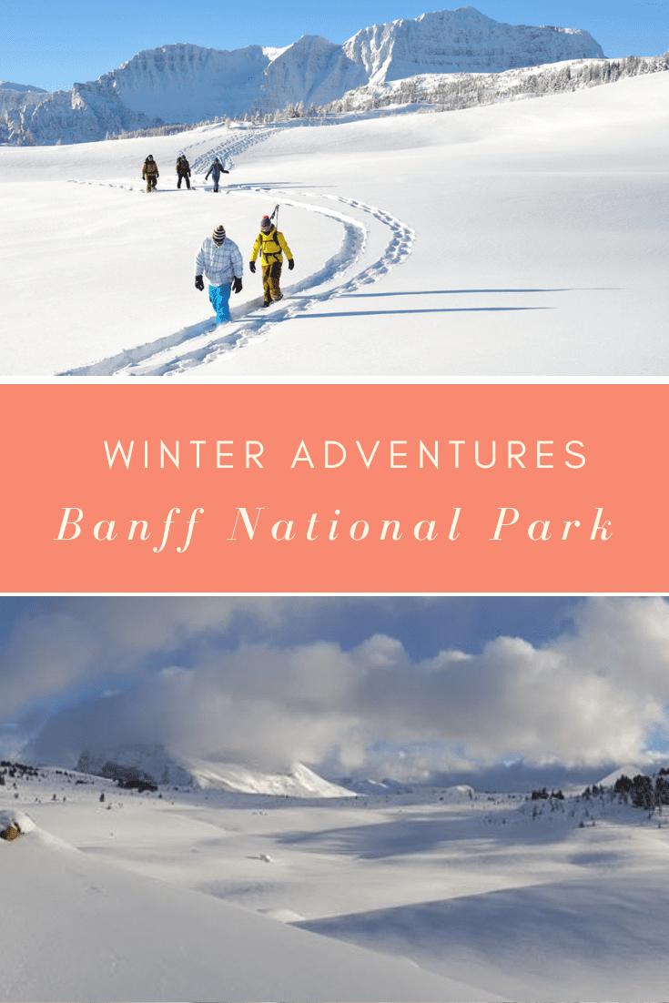 snowshoeing banff national park