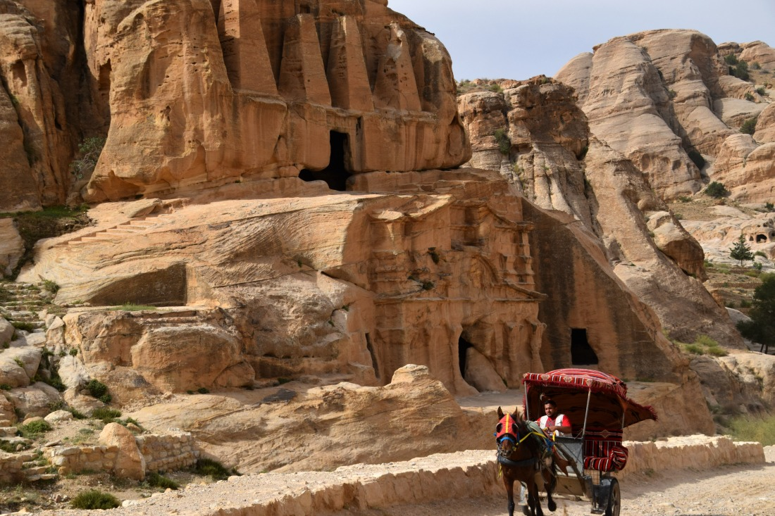 Petra horse and buggy tours