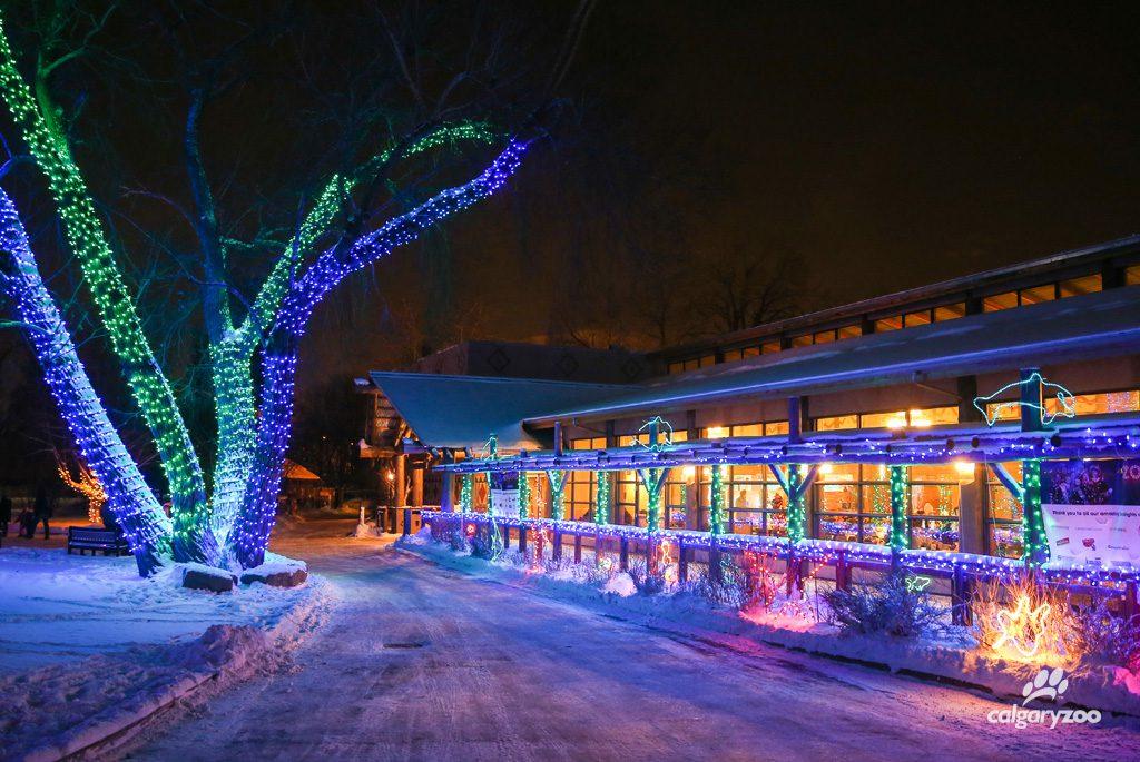 Calgary zoo zoolights