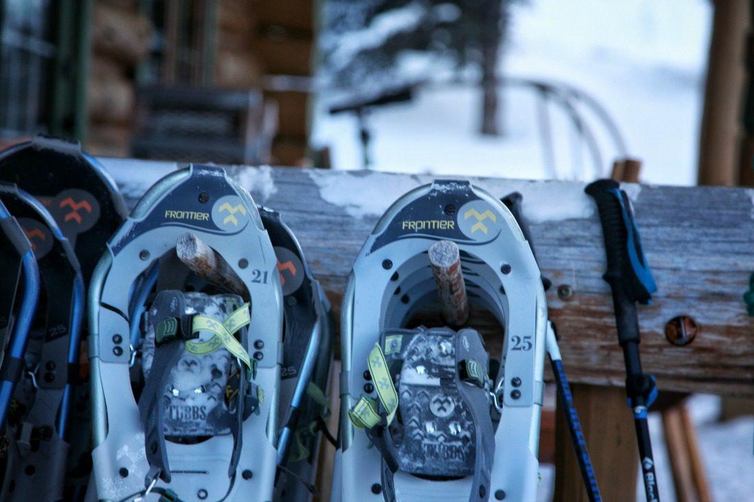 snowshoeing assiniboine provincial park