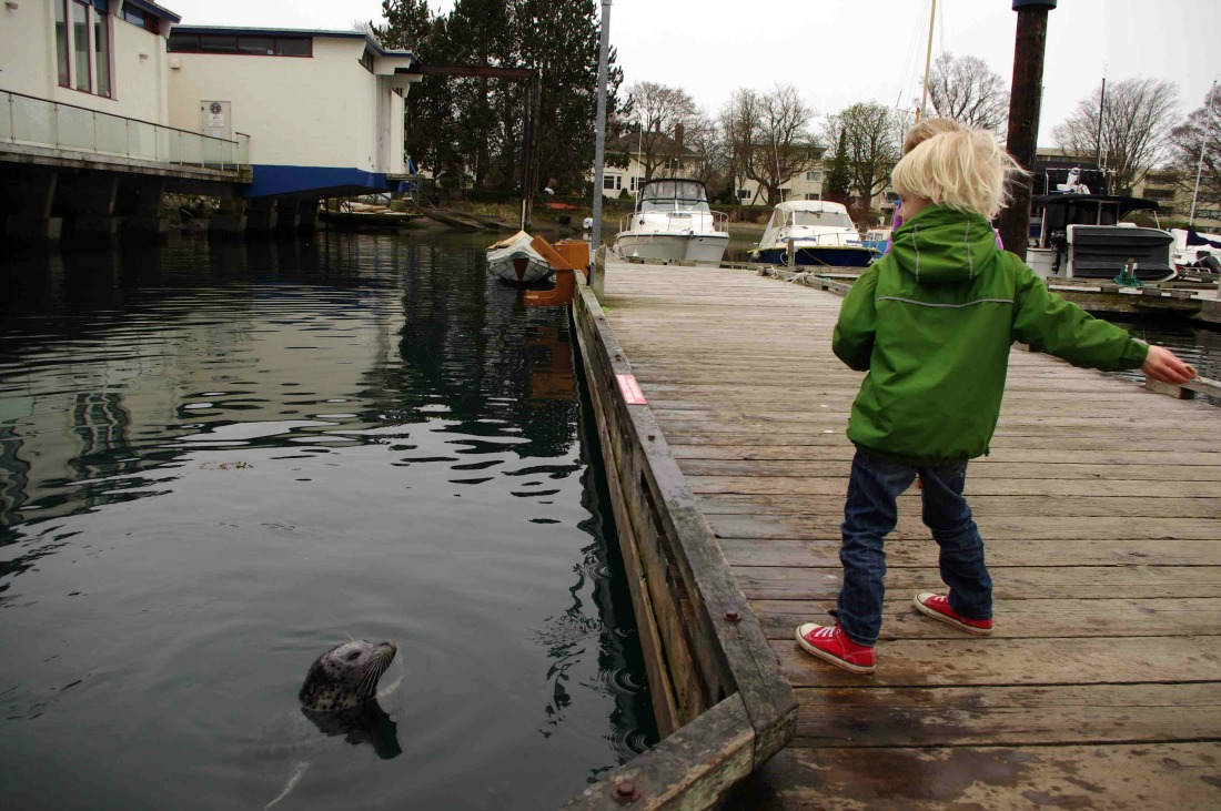Visiting Vancouver Island? Check out fun things to do in Victoria with kids