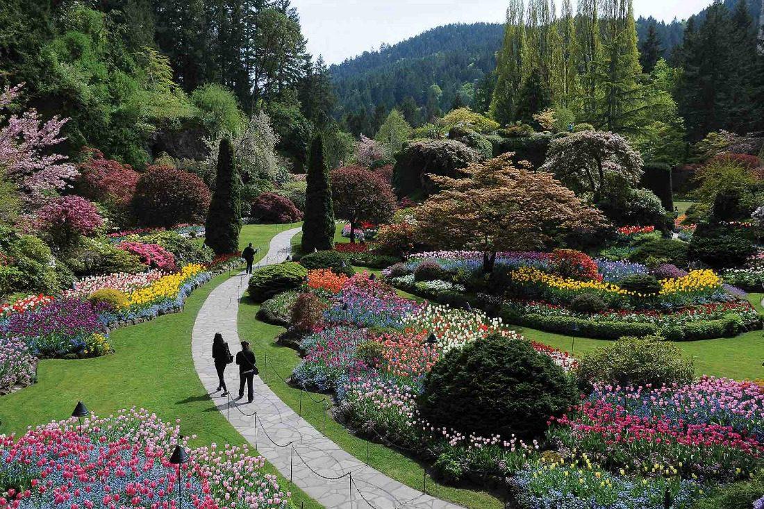 city of gardens