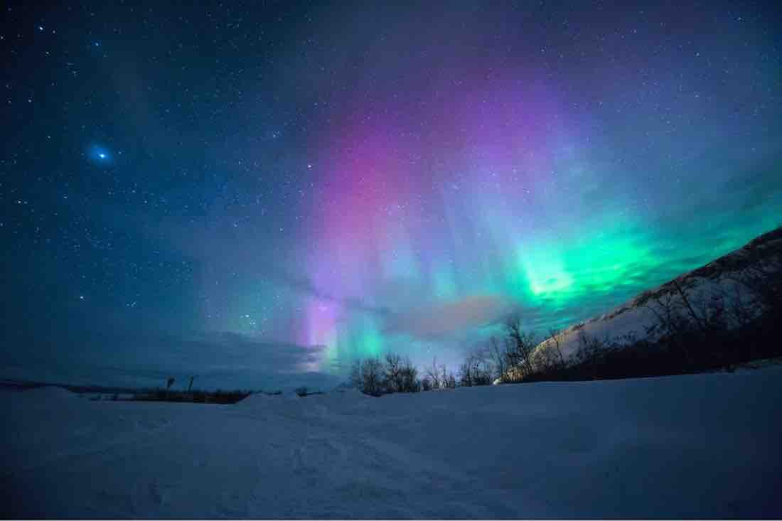 Northern Lights Alberta