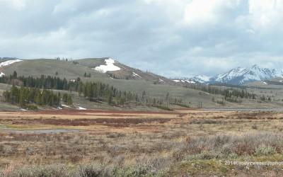 Yellowstone near West Entrance
