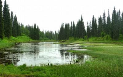 Alaska, near Croto Lake