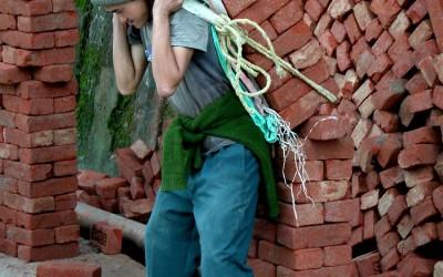 De Arbo zal hier zo z'n gedachten over hebben, Darjeeling, West-Bengalen, India, 2009