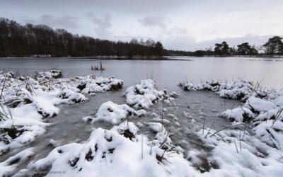 Leersumse Veld, Leersum, Nederland, 13-1-2017