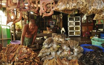 Myanmar, vismarkt tussen Kyaiktiyo en Kawa