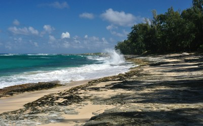 North Shore, Oahu, Hawaii, 2011