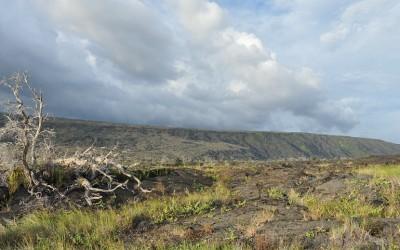 Pu'hy Loa, Big Island, Hawaii 2011
