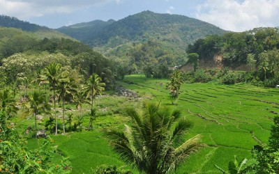 Onderweg naar Bajawa, Flores, Indonesië, 2012