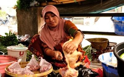 Poulier, Sembalun, Lombok, Indonesië, 2012