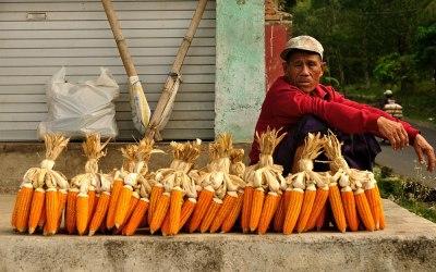 Markt in de buurt van Tetebatu, Lombok, Indonesië, 2012
