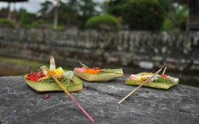 Offer, Taman Ayun, Bali, Indonesië, 2012
