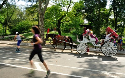 Central Park Impression, NYC, 20-9-2014