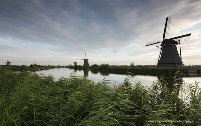 Kinderdijk, Molenkade, 5-8-2015