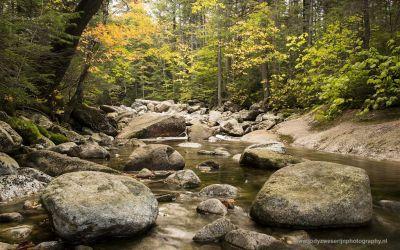 Riviertje langs de Pemi Trail, Franconia State Park NH, 6-10-2015