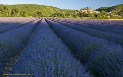 Zonsopkomst bij Banon, Provence, Frankrijk, 7-7-2016