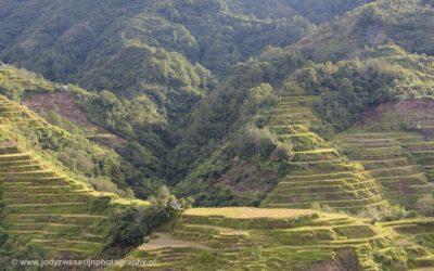 Een laatste blik op de rijstterrassen van Banaue, Luzon, Filipijnen, 17-11-2017