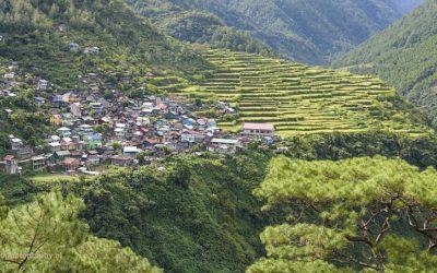 Bay-Yo rice terasses, Luzon, Filipijnen, 17-11-2017