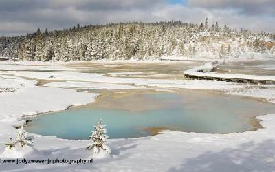 Norris, Yellowstone, USA, 29-1-2019
