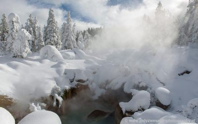 Norris Geyser Basin, Yellowstone, USA, 24-1-2019
