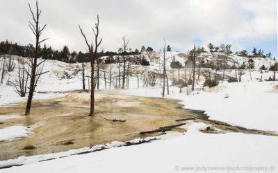 Angel Terace, Main Terace, Jupiter Terace, Canary Spring, Mammoth Hot Spring, Yellowstone, USA, 18-1-2019