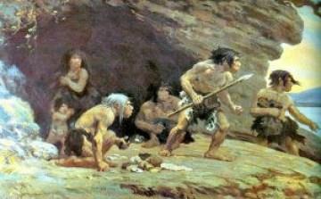 hominidos, vida, comunicación