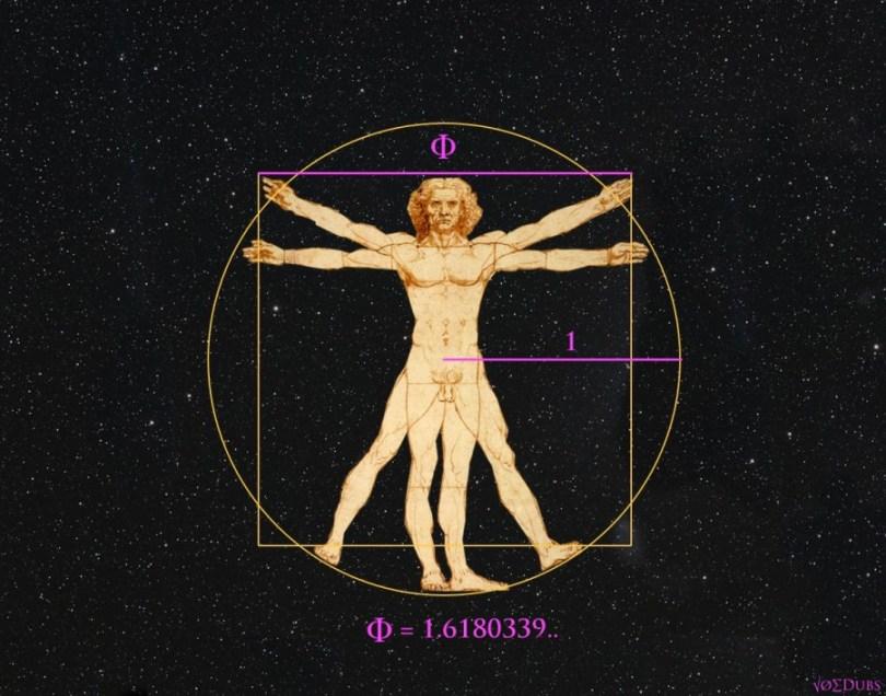 Vitruvian Man Phi Ratio