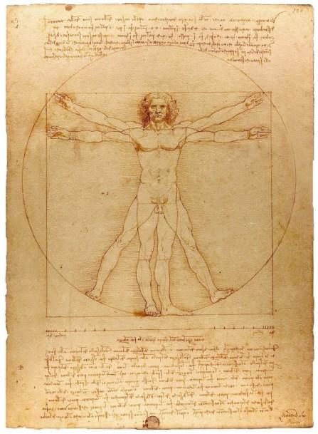 Vitruvian Man Phi Ratios