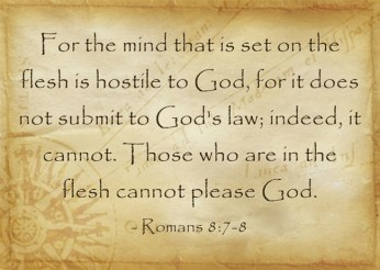 Romans 8-7-8