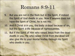 Romans 8-9-11