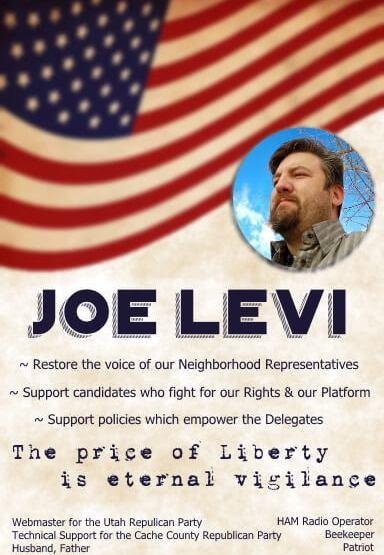 Go to Vote For Joe Levi