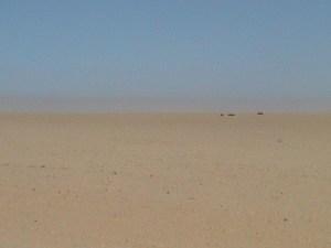 20040315 03 Namibia C35