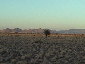 20040318 01 Namibia D845