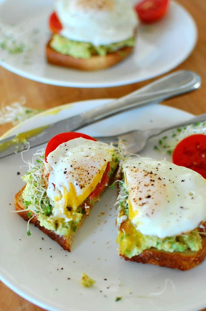 Avocado toast with fried egg and alfalfa sprouts