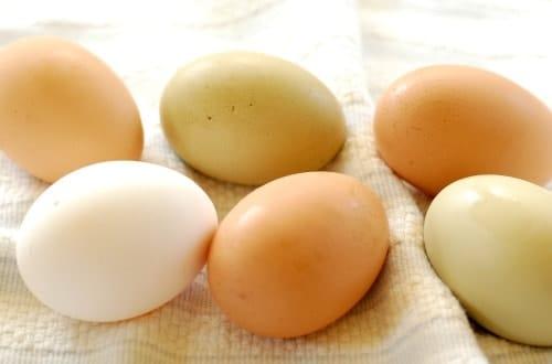 Fresh eggs. Right off the farm.   joeshealthymeals.com