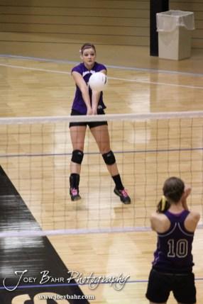 Wilson Lady Dragon Antjelica Pfannenstiel (#14) returns a serve during the Wilson versus Weskan KSHSAA Class 1A Division II State Volleyball Pool II match with Weskan winning 26-24, 25-12 in Hays, Kansas on October 26, 2012. (Photo: Joey Bahr, www.joeybahr.com)
