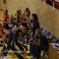 The Ellinwood Lady Eagle bench cheers scoring a point during the 2014 Central Prairie League Volleyball Tournament at Hoisington Activity Center in Hoisington, Kansas on October 18, 2014. (Photo: Joey Bahr, www.joeybahr.com)