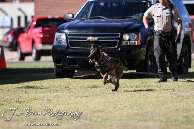 Kia pursues a suspect during the KVGB AM 1590 City Edition Show with the Great Bend Police Department at Eagle Radio Broadcast Center in Great Bend, Kansas on October 15, 2014. (Photo: Joey Bahr, www.joeybahr.com)