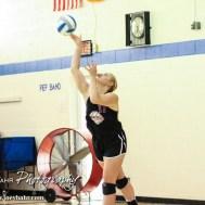 Otis-Bison Lady Cougar Haley Vondracek (#17) serves the ball during the Otis-Bison High School versus Macksville volleyball game at Otis-Bison High School in Otis, Kansas on October 7, 2014. (Photo: Joey Bahr, www.joeybahr.com)