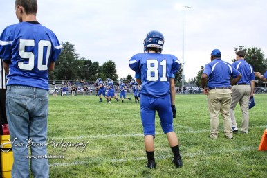 St. John Tiger #81 Dalton Nemec, the lone substitute for the team, stands on the sideline in the first quarter. The Otis-Bison Cougars defeated the St. John Tigers by a score of 58 to 0 at St. John High School in St. John, Kansas on September 1, 2017. (Photo: Joey Bahr, www.joeybahr.com)