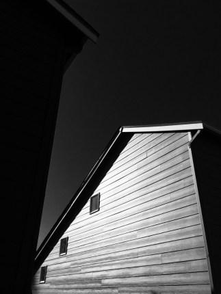 Dramatic monochromatic extior of an American suburban house